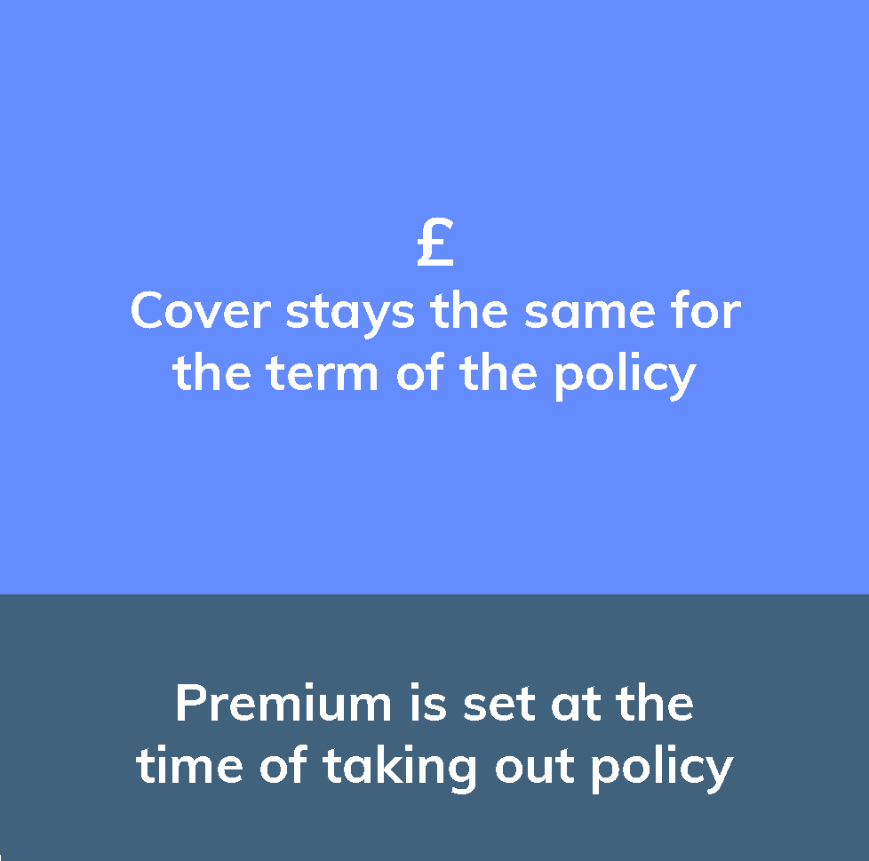 Level term insurance infographic