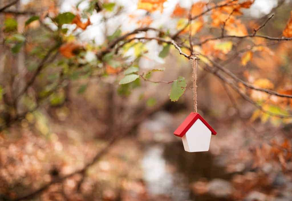 A house shaped ornament hangs from the branch of a tree